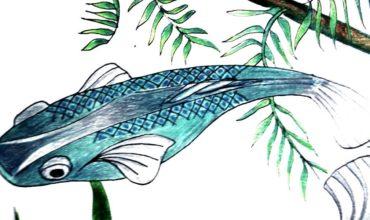 copertina-sezione-acquariologia