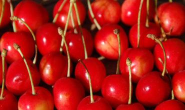 antichi-frutti-orvieto