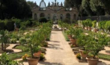 il-giardino-malandrino