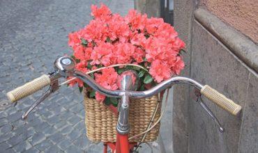 fiori-in-bicicletta-29-marzo-2018