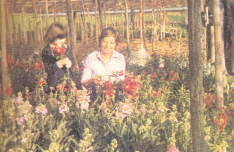 Famiglie al lavoro in giardino