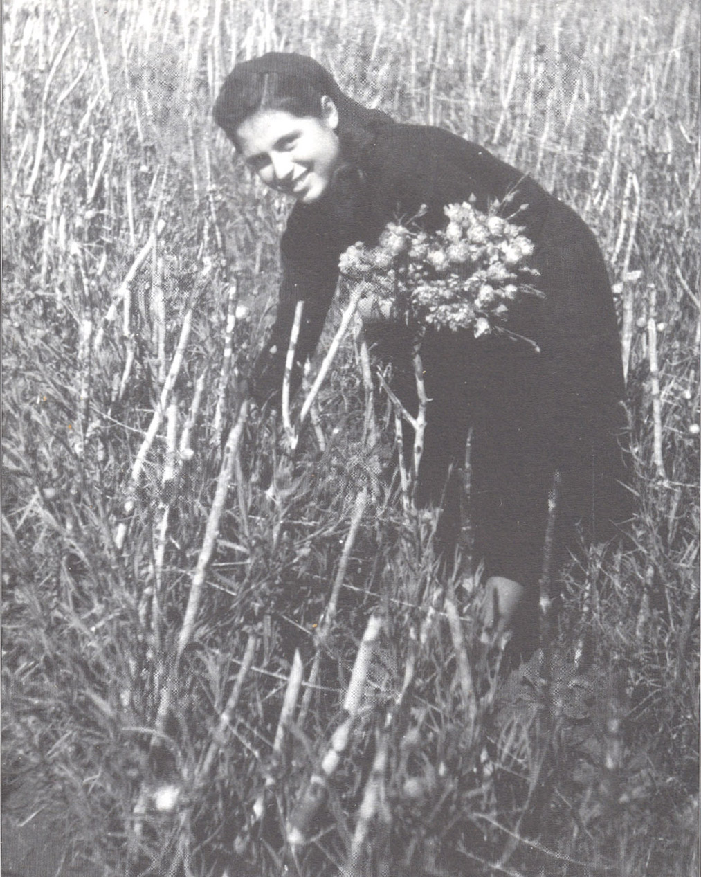 Teresa Cola mentre raccoglie i garofani